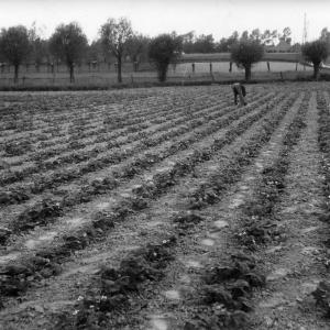 622628-vue-terres-agricoles.jpg
