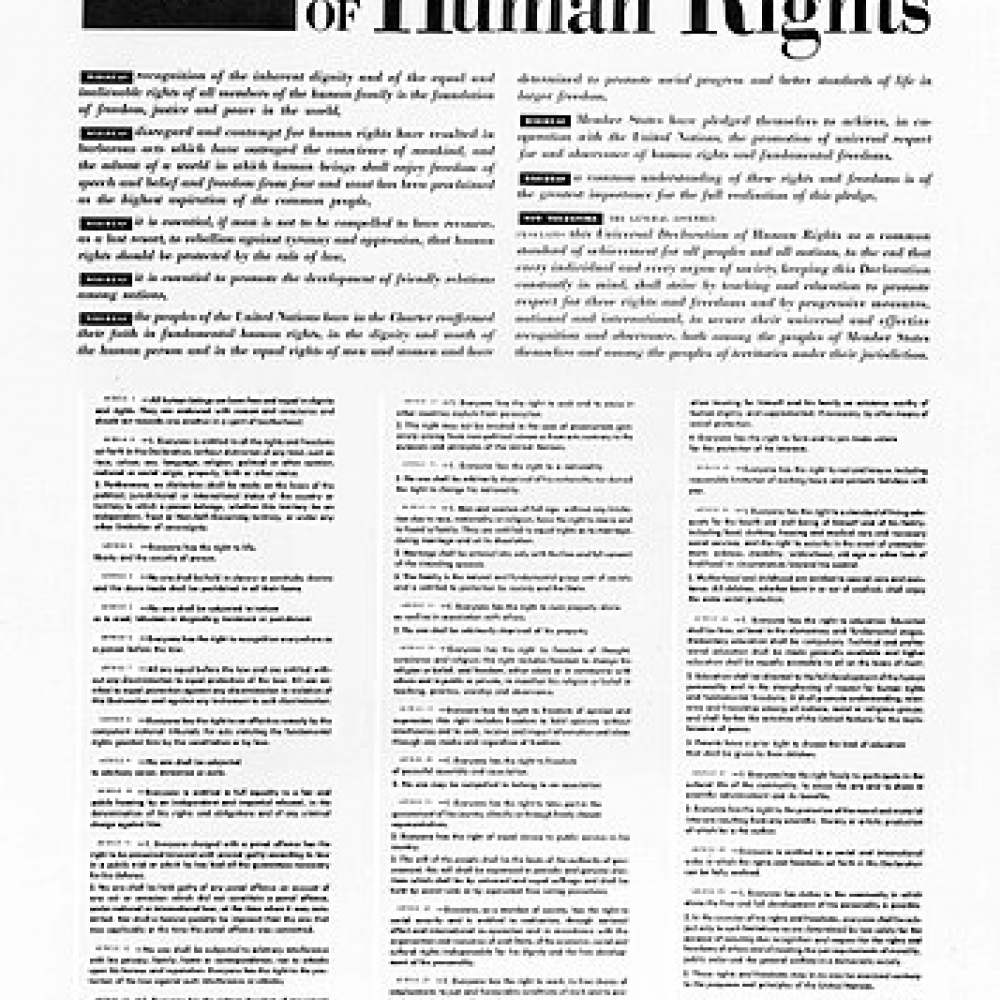 356px-the_universal_declaration_of_human_rights_10_december_1948.jpg