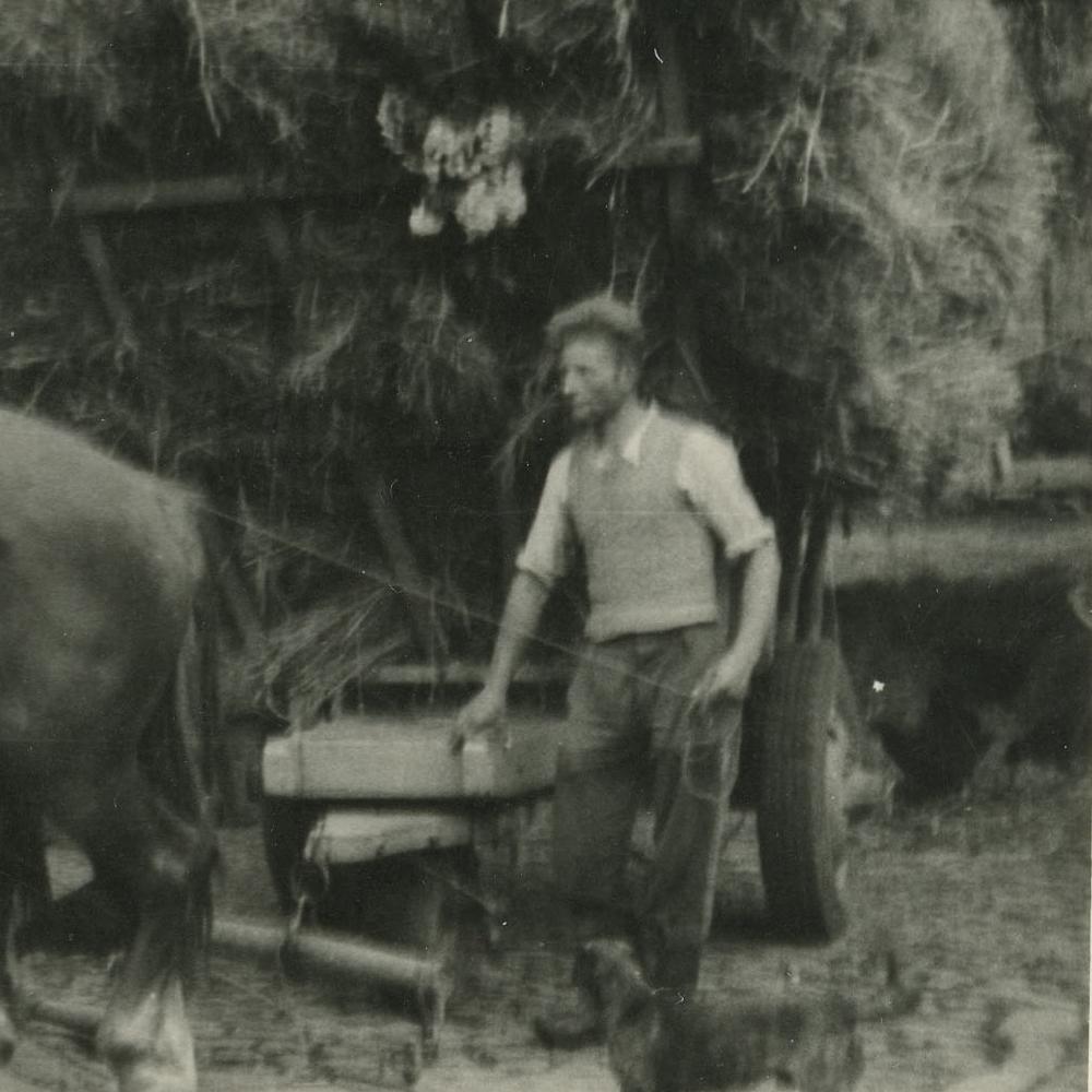 Hubert a la ferme-1