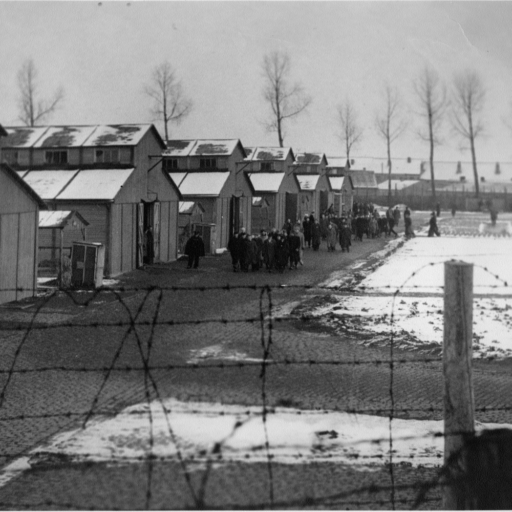 kamp-van-lokeren-longinus-de-munter-5.jpg